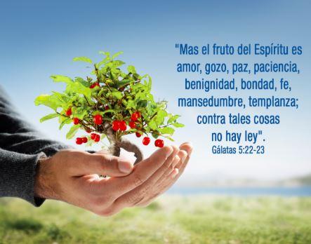 Tened también vosotros paciencia, y afirmad vuestros corazones; porque la venida del Señor se acerca