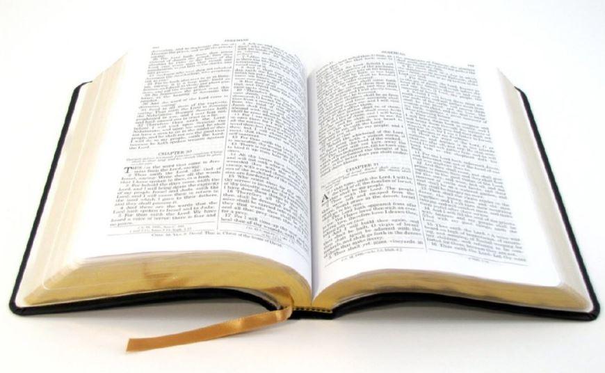 Conoce todos los libros de la biblia • Antiguo testamento • Nuevo testamento ✅ •T odos los libros bíblicos • Libros del antiguo testamento
