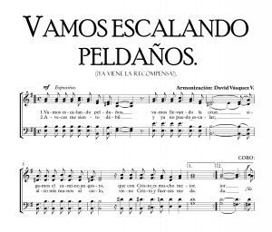 VAMOS ESCALANDO PELDAÑOS