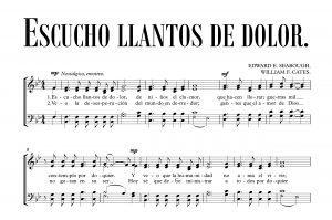 ESCUCHO LLANTOS DE DOLOR