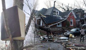 Biblia es encontrada intacta entre ramas de un árbol tras fuerte tornado en Nashville