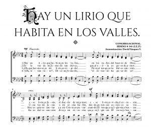 HAY UN LIRIO QUE HABITA EN LOS VALLES.